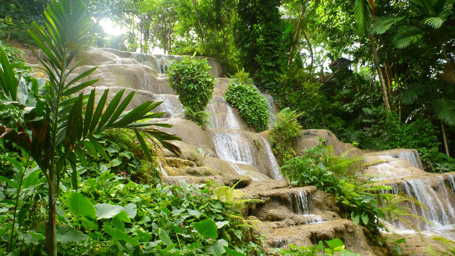 Coyaba River Gardens & Museum